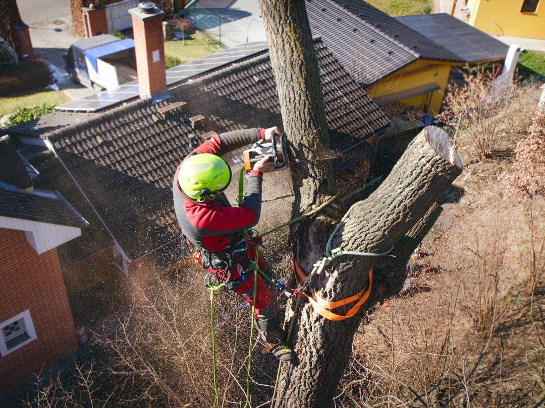 Postupné spilovanie stromu
